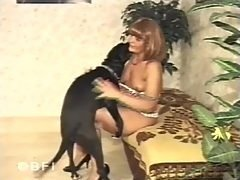SeXXX Animal - Fuck your pet  It is old trend but still very